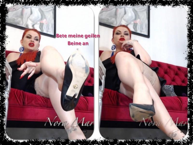 Leg Worshiper - Bete meine sexy Beine an