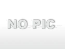 Kaviarstrich-Friss Du perverse TV-Schlampe